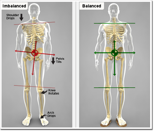 11 Exercises For Lower Crossed Syndrome One Adjustment